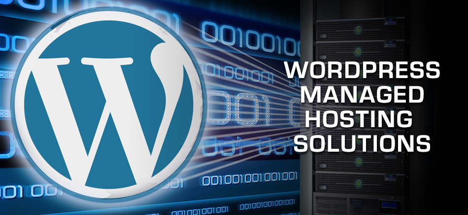 Proimages.net WordPress Managed Solutions